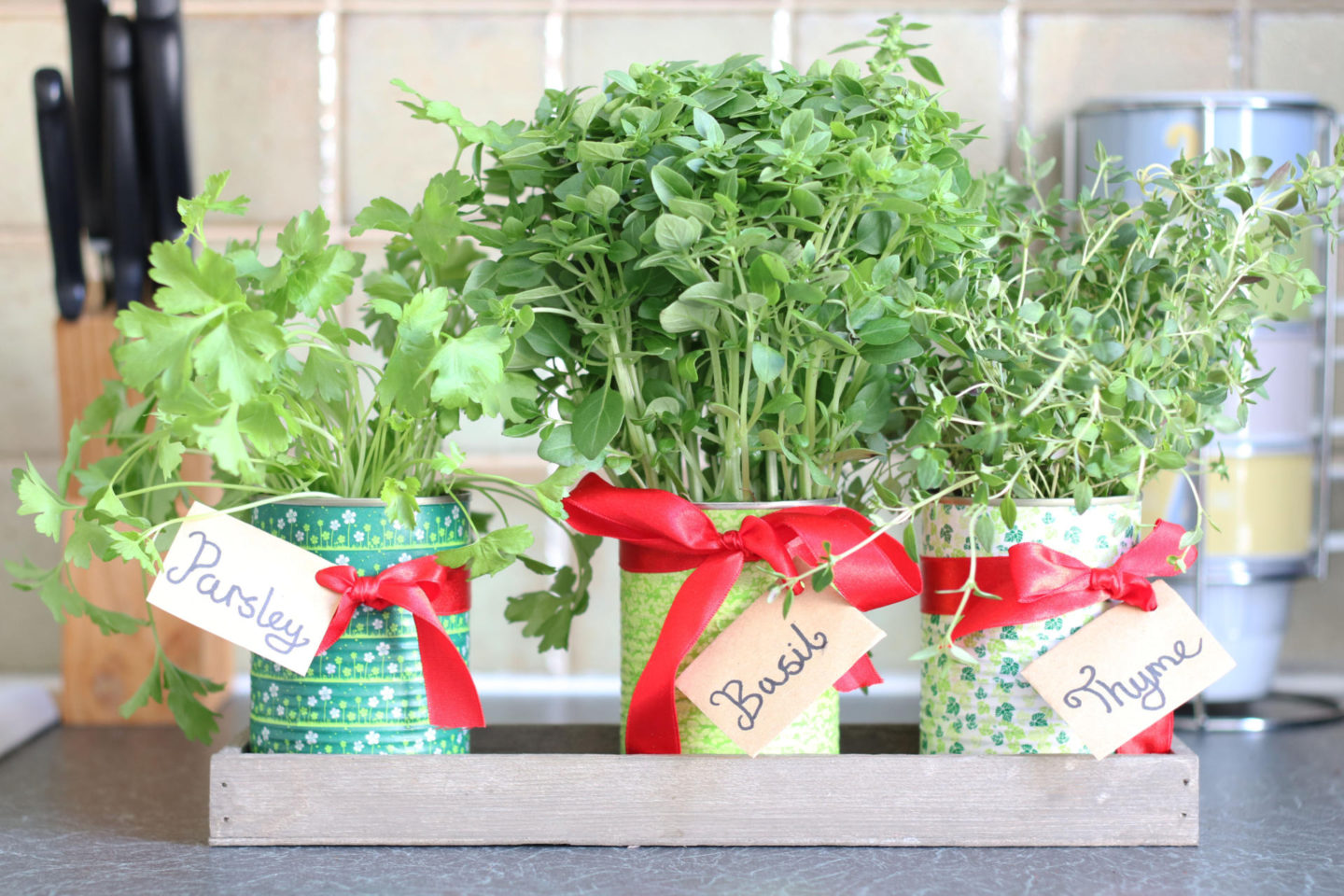 Herb Pot DIY - 3 Simple Upcycling Projects for British Flower Week. From Metal Cans to Herb Garden